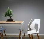 Czym się kierować przy wyborze krzeseł do jadalni?