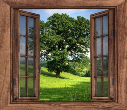 Okna drewniane i ich zalety